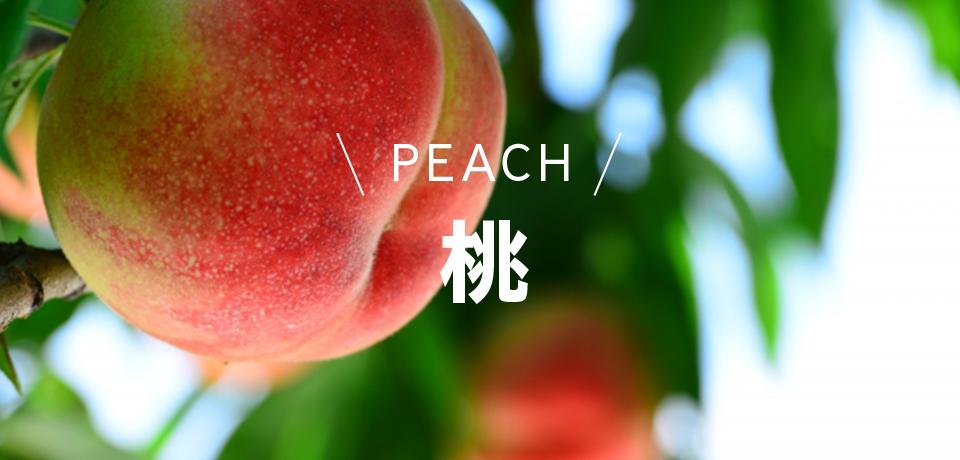 桃peach